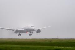 着陸「霧の中から」