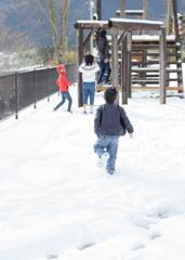 四国も雪が積もりました!