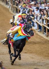 この国の歴史「お供馬の走り込み」