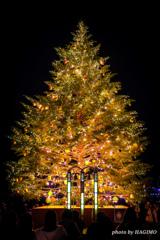 クーリスマスが今年もやってくる♪♪♪