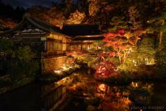 寳登山神社 紅葉ライトアップ 2