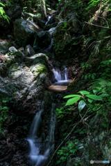 秘境の垂水