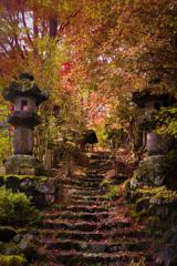 秋の入り口へ
