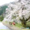 駒繋ぎの桜・奉納舞
