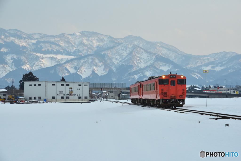 雪景色にタラコ②