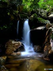 楊梅の滝 お気に入りポイント