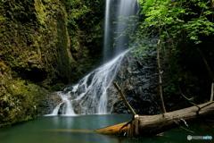 滝又の滝下段