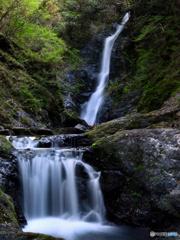 野鹿の滝、子瀑添え