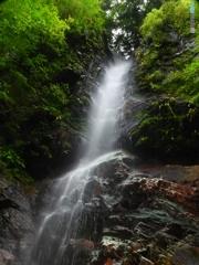 背龍の滝 上部全景