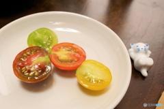 西条で買ったトマト