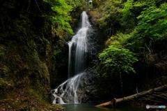 滝又の滝へ