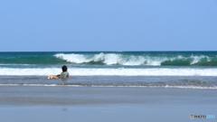 波をよく見て