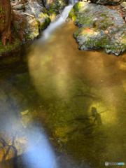 不動の滝のセルフポートレート