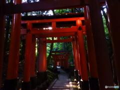 伏見稲荷4/5早朝