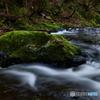 季節外れの川遊び~水の形