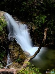 静穏の滝、凛々しい横顔