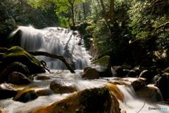 うわさの滝~下の大滝2
