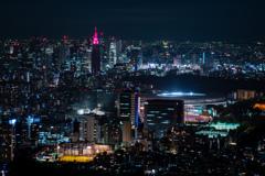 東京夜景  新宿