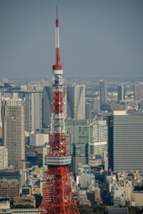 tokyo's cityscapesⅦ1
