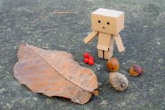 栗にどんぐりに…   ダンボーの秋探し