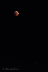 赤い月と火星