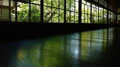 永観堂4 床緑