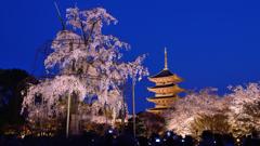 東寺1 ブルーアワー