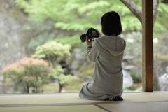 慈恩禅寺5 いいの撮れてますか?
