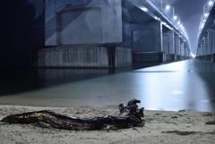 琵琶湖大橋パトロール