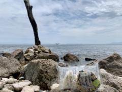奥琵琶湖ランチタイム