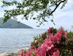 奥琵琶湖ウォーキング 2021年6月12日