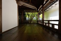 永観堂3 白壁のレフ板