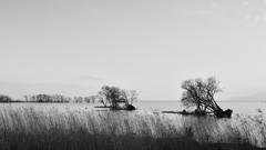 モノクロ湖北