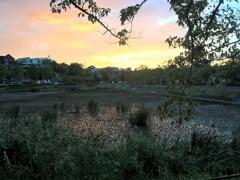 わが街の秋の夕暮れ(1)
