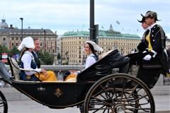 無敵の微笑 (スウェーデン王家の行幸 4)