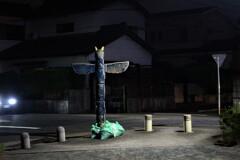 真夜中の散歩の守護者