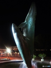 クジラのジャンプ (サンディゴ大学の日々 7)