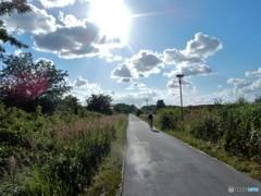 野原を貫く自転車道路 (コペンハーゲン郊外)