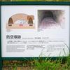 平和公園・松山町防空壕跡 (4)