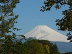 P1120109 10月21日 朝の富士山