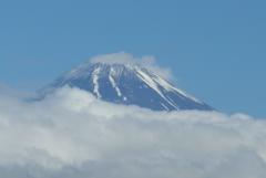 P1160494 6月16日 今朝の富士山