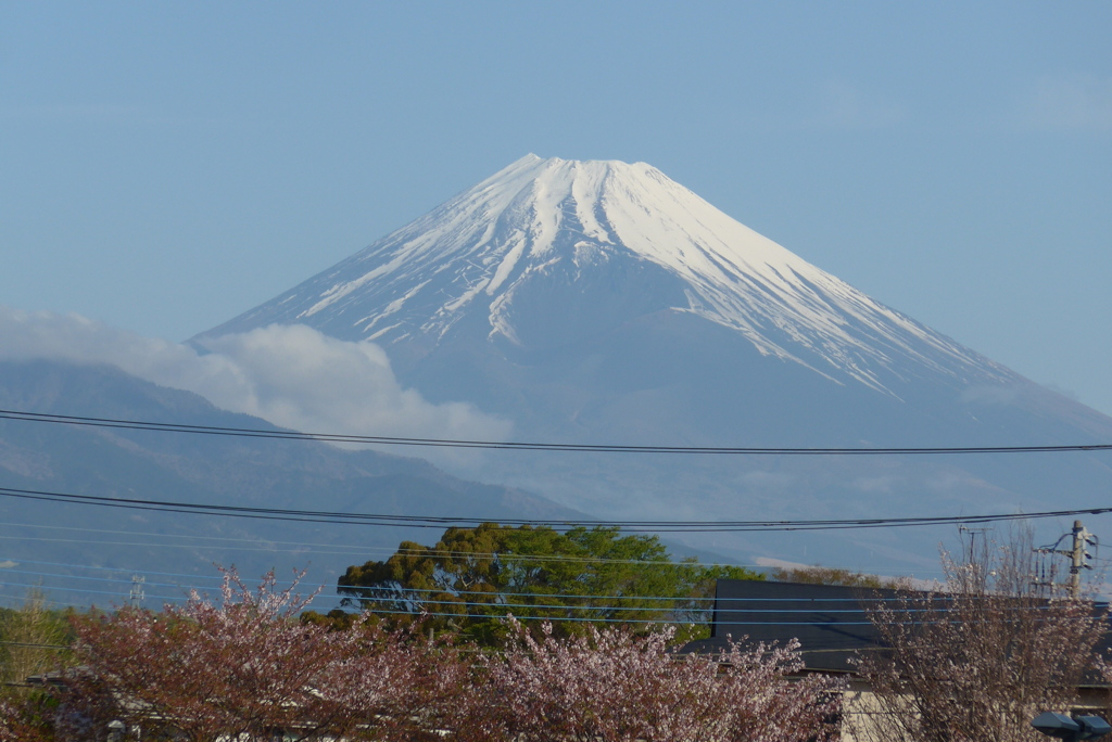 P1260671 4月6日 今朝の富士山