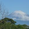 P1240836 9月28日 今朝の富士山