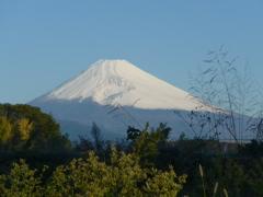 P1120105 10月21日 朝の富士山