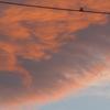P1240561 朝焼け雲
