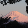 P1190646 1月5日 今朝の富士山