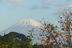 P1250198 10月21日 柿と富士山