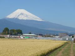P1120112 10月21日 今日の富士山
