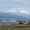 P1260169 3月1日 今日の富士山