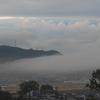 P1120319 ある朝の風景